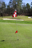 Hole in One. Golf green with flag royalty free stock image