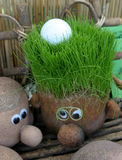Hole in One Head. A planter holds grass and a golf ball Stock Image