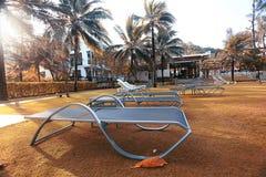 Hole przy palmy plażą Zdjęcie Stock