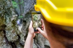 Taking a picture of the hole and whats behind royalty free stock photos