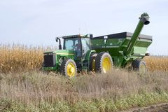 Holen Sie in den Mais Lizenzfreies Stockbild