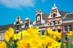 Holenderów domy z żółtymi tulipanowymi kwiatami, Amsterdam, holandie Zdjęcia Royalty Free