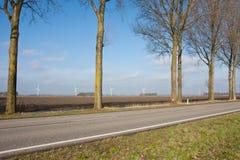 holenderów windturbines krajobrazowi wiejscy Zdjęcie Royalty Free