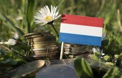 Holender flaga z stertą pieniądze monety z trawą Obrazy Royalty Free
