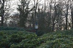 Holendera kasztelu ogródu lampion obraz royalty free