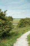 Holendera krajobraz z drogą w wiośnie obrazy royalty free