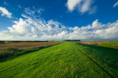holenderska pól uprawnych krajobrazu Zdjęcie Stock