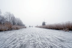 holenderska zima zdjęcia royalty free