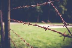 Holenderski krajowy holokausta pomnik, westerbork zdjęcie royalty free