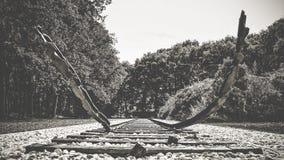 Holenderski krajowy holokausta pomnik, westerbork fotografia royalty free