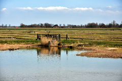 Holenderski polderu krajobraz Zdjęcie Royalty Free