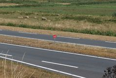 Holenderski słowo CADO na drogowym znaku zdjęcia royalty free