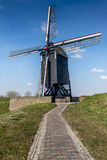 Holenderski wiatraczek Zdjęcie Stock
