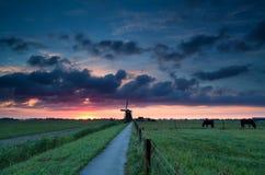 Holenderski wiatraczek i konie na paśniku Obraz Royalty Free