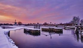 Holenderski wiatraczek w śniegu Holland zima Zdjęcie Royalty Free