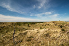 Holenderskich diun denny defence blisko Petten, het Zwanenwater Fotografia Stock