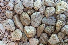 Holey stenar på en strand Arkivfoto