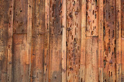 Holey wood wall Royalty Free Stock Images