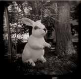 Giant Holga Plastic Rabbit in Trees Royalty Free Stock Photo