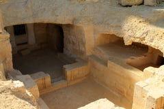 Holgraven in de Siwa-Oase in Egypte stock foto's