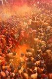 Holi -颜色节日在印度 库存图片