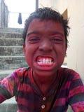 Holi celebration Stock Images