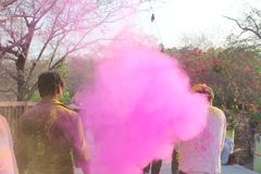 Holi, festival stock fotografie