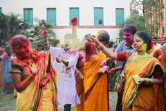 Holi Festival Celebrations Stock Photography
