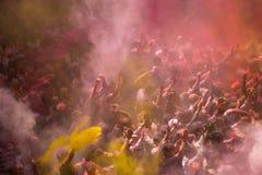 Holi Festival. In Mathura India Royalty Free Stock Photos