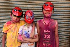 Holi Hay Royalty Free Stock Photography