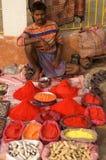 Holi Paint Royalty Free Stock Photography