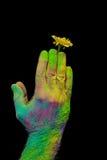 Holi pintó las manos fotografía de archivo libre de regalías