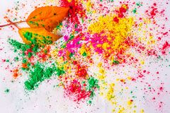 Holi Powder with autumn foliage Royalty Free Stock Photo