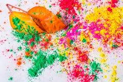 Holi Powder with autumn foliage Stock Photos