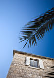Holiday appartment window. And a palm tree branch with blue sky in the background Stock Photos