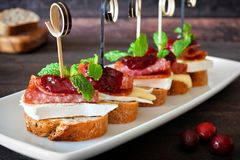 Holiday appetizers with cranberry sauce on a white serving plate Stock Images