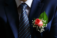 Holiday attire groom at  wedding. Royalty Free Stock Image