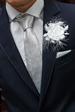 Holiday attire groom at  wedding. Royalty Free Stock Photography
