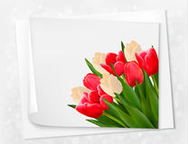 Holiday background with bouquet of red flowers Royalty Free Stock Photo
