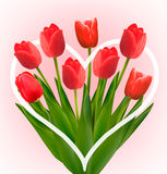 Holiday background with bouquet of red flowers. Royalty Free Stock Photo