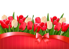 Holiday background with bouquet of red and white f Stock Images