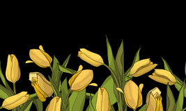 Holiday background with bouquet of yellow tulips. Seamless border background Royalty Free Stock Photo