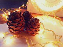 Holiday background with cedar cones and garland. Holiday beautiful background with three cedar cones illuminate by a garland Stock Photo