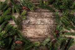 Holiday background of Christmas fir branches, spruce, juniper, fir, larch, pine cones with light. Xmas and New Year theme. Flat lay, top view stock image