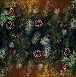 Holiday background of Christmas tree branches, spruce, juniper, fir, larch, pine cones with light. Xmas and New Year theme. Flat lay, top view stock photos
