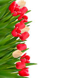 Holiday background with colorful flowers. Royalty Free Stock Photos