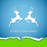 Holiday background with deer Stock Photos