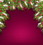 Holiday Background with Fir Branches and Berries Royalty Free Stock Photography