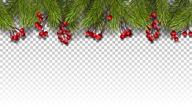 Holiday background with fir branches and red berries stock images