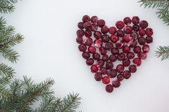 Holiday background. Fir tree branches with heart from frozen red cherries on white snow stock photos